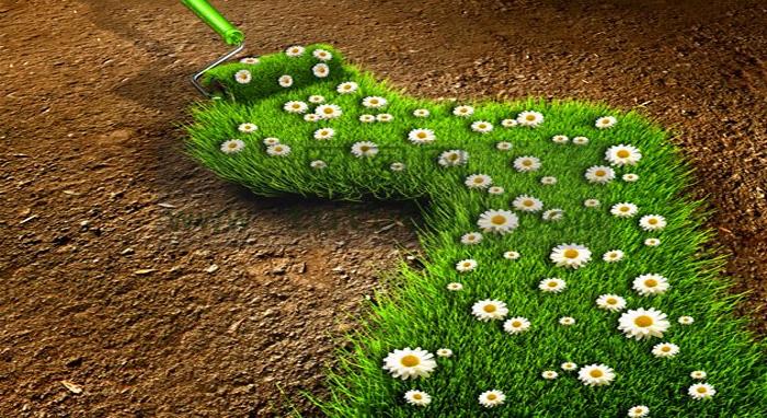 雷竞技app官方下载部发布《污染地块土壤环境管理办法》